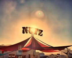 New NuTz Camp Website